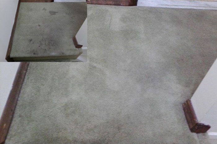 Carpet Cleaning- Before & After